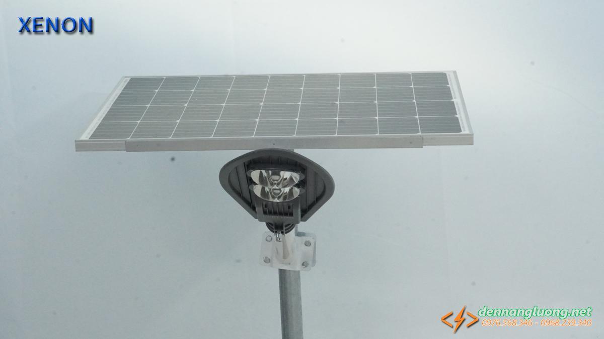Đèn NLMT Roiled chính hãng